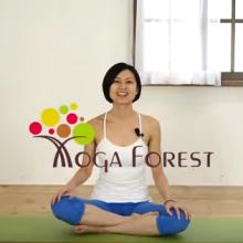 ヴィンヤサフロー 中級者/上級者 Yoga Forest